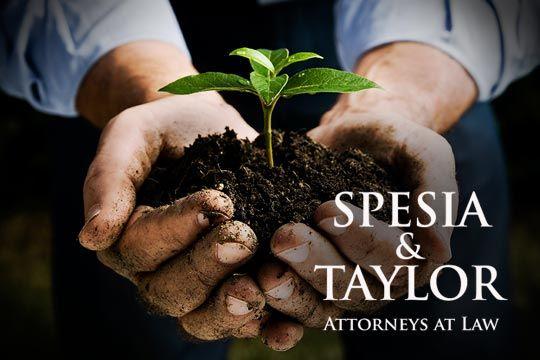 Spesia & Taylor Philanthropy